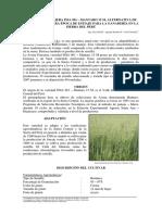 pub_p377_pub.pdf