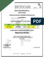 Certificado Trabajo en Altura Lisane