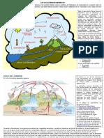 Los Ciclos Biogeoquímicos Más Importantesss - 1ro Sec