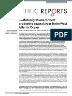 Lam, C. H., Galuardi, B., Mendillo, A., Chandler, E. and Lutcavage, M. E. 2016. Sailfish migrations connect productive coastal areas in the West Atlantic Ocean. Scientific Report 6, 38163; doi