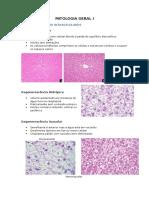 Mini Atlas Patologia Geral I