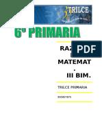 R.M. III BIM.doc