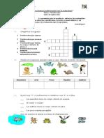 Vertebrados e Invertebrados 2 Basico