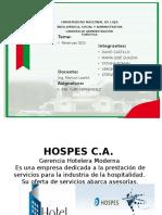 GRUPO N° 2 HOSPES .