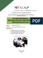 Reingenieria de Procesos APA