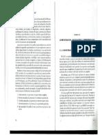 MANUAL_ICAP.pdf