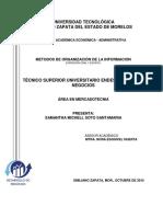 Metodos de Organizacion Informacion