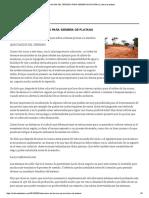 Adecuacion Del Terreno Para Siembra de Platano _ Cultivo de Platano