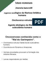 6 Onchocerca Volvulus - Filária Subcutânea-1