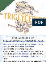 Triglyceride 2