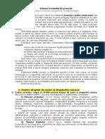 DPI Sistemul de Protecție