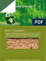 biokütle enerjisi (ENG)