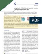 Carbon Nanotube Growth - A Reactive Molecular Dynamics:Monte Carlo Study