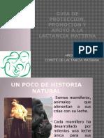 La Guia de Proteccion, Promocion y Apoyo A