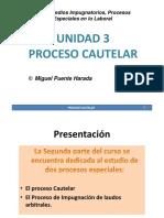 Unidad III Proceso Cautelar