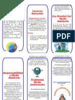 tripticomedioambiente-111118160642-phpapp02.doc