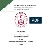 5 Informe de Minería y Medio Ambiente