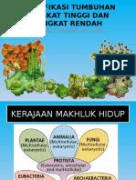 metode klasifikasi tumbuhan