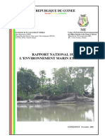 National Report Guinea
