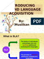Introduction to SLA in university level