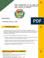 DIAPOS EXPO PPP.pptx
