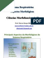 Sistema Respiratório (Aspectos Morfológicos) - Ciências Morfofuncionais II - Marcos Borges Ribeiro Apresentado Por