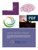 NLP Vidare - Master Practitioner 2017