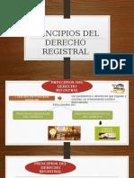 PRINCIPIOS-REGISTRALES