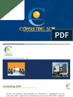 ConsultingSCM - Educacion SAP ERP