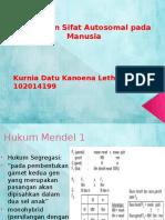 Ppt polidaktili blok 4.pptx