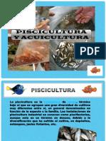 CLASS-PISCICULTURA-2.016 foto.pdf