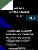 Aula Lesão e Morte Celular III e IV Prof. Luiz Rocha