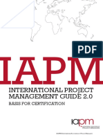 International Project Management Guide 2.0 (IAPM)