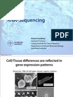 54191221-RNA-Sequencing.pdf