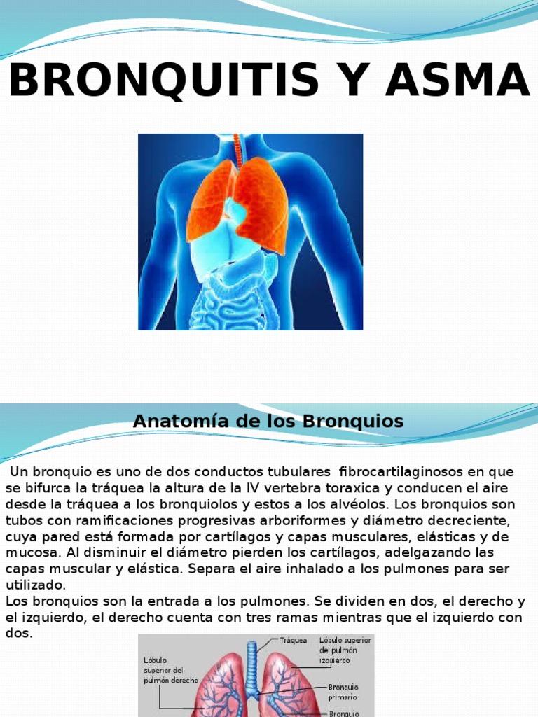 Bronquitis Nuevo