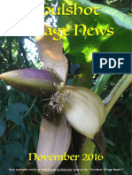 Poulshot Village News - November 2016