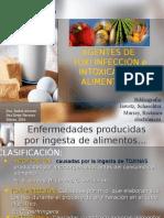 Agentes de Toxi Infección e Intoxicación Alimentaria