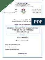 Mémoire Master Guettaf Hamza 2015