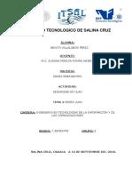 SEGURIDADENVLAN_BENITA.pdf