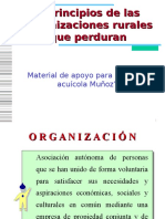 Dcto01La Organización Económica Rural