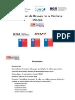 10.-Valorizacion-de-Relaves-de-la-Mediana-Mineria.pdf