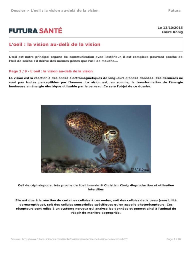 5d68d163a59a7 Anatomie et Physiologie de l oeil
