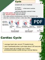 Card Cycle