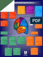 Carte Du Cerveau