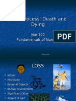 Grief Process Death and Dying