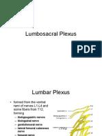 Lumbosacral Plexus
