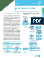 16717312014930161239.pdf