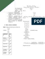 Informe Complejo de Hierro Finallllll (1)