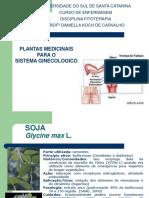 1592363181.Plantas Medicinais Para o Sistema Ginecológico