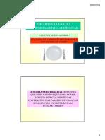 Psicofisiologia Do Comportamento Alimentar 20-03